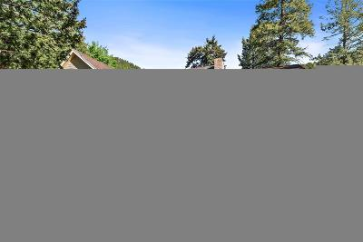 Conifer Single Family Home Under Contract: 12035 Bear Park Road