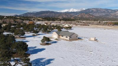 Buena Vista CO Single Family Home Under Contract: $399,999