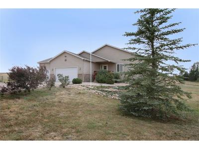 Elizabeth Single Family Home Under Contract: 43249 Saddlehorn Drive