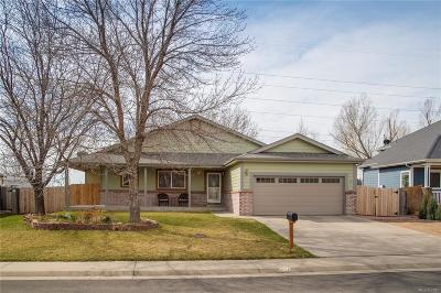Mead Single Family Home Under Contract: 218 Eagle Avenue