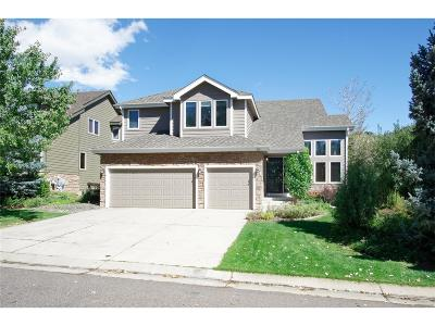 Littleton Single Family Home Active: 62 Willowleaf Drive