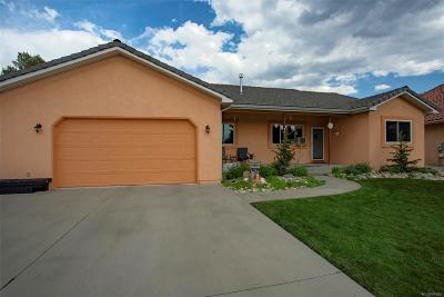 Salida Single Family Home Active: 5 Silver Spruce Drive