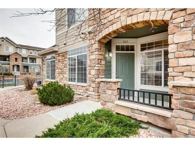 Castle Rock Condo/Townhouse Under Contract: 452 Black Feather Loop #605