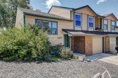 Castle Rock Single Family Home Active: 1958 Santana Drive