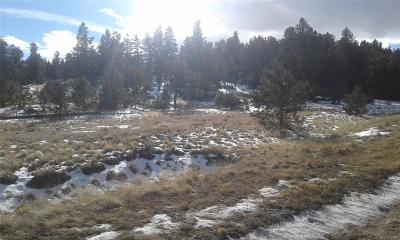 Hartsel Residential Lots & Land Active: 144 Summit Road
