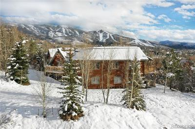 Steamboat Springs CO Single Family Home Active: $1,190,000