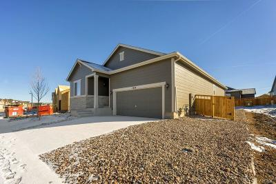 Castle Rock Single Family Home Active: 7234 Greenwater Circle