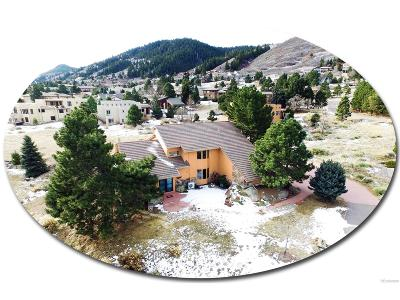 Littleton Single Family Home Under Contract: 6414 Willow Broom Trail