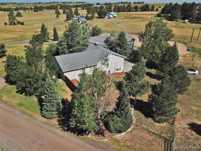 Single Family Home Active: 10337 North Delbert Road