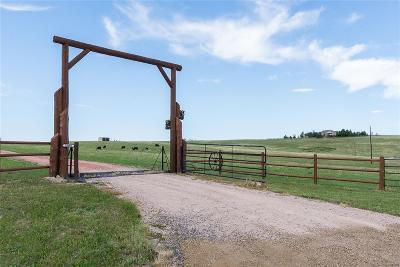 Elizabeth Single Family Home Under Contract: 28660 Sunup Circle
