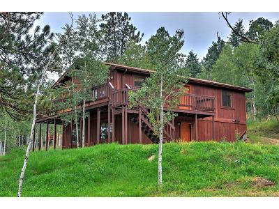 Park County Single Family Home Active: 102 Yum Yum Tree Lane