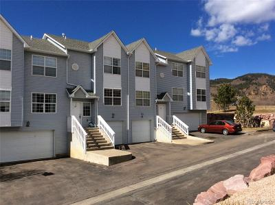 Palmer Lake Condo/Townhouse Under Contract: 84 Vale Street