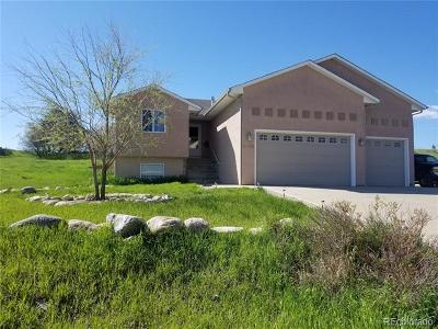 Colorado City Single Family Home Active: 4056 Anthony Avenue