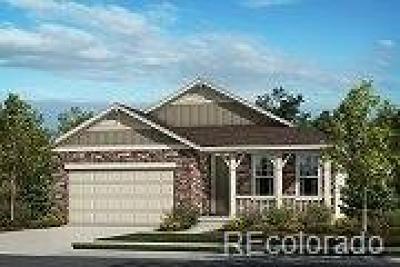 Thornton Single Family Home Active: 15958 Detroit Street