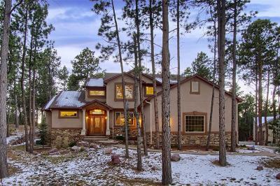 Colorado Springs Single Family Home Active: 17766 Sawmill Road