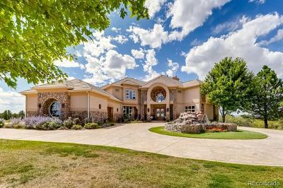 Castle Rock CO Single Family Home Active: $2,400,000