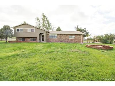 Henderson Single Family Home Active: 12380 East 116th Circle
