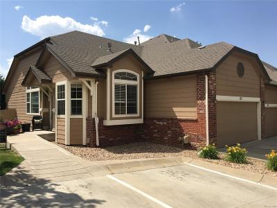 Superior Condo/Townhouse Under Contract: 2855 Rock Creek Circle #173