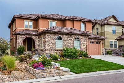 Highlands Ranch Single Family Home Under Contract: 10650 Skydance Drive