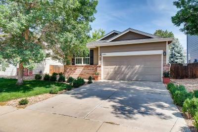 Thornton Single Family Home Active: 13163 Vine Court