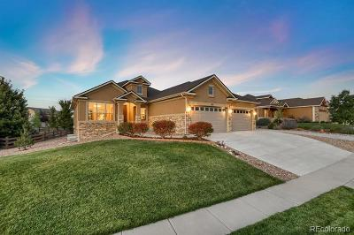 Colorado Springs Single Family Home Active: 373 Coyote Willow Drive