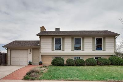 Single Family Home Active: 4390 South Wright Way