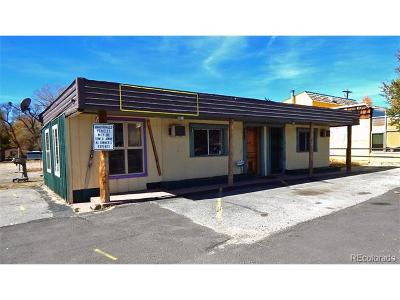 Buena Vista Single Family Home Active: 412 Us Highway 24 Highway