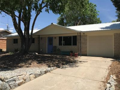 Buena Vista CO Single Family Home Active: $289,000