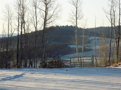 Park County Residential Lots & Land Active: 31 Knot Way