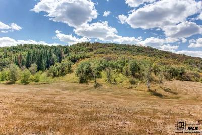Steamboat Springs Residential Lots & Land Active: Bella Vista Circle