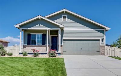 Bennett Single Family Home Under Contract: 47369 Lily Avenue