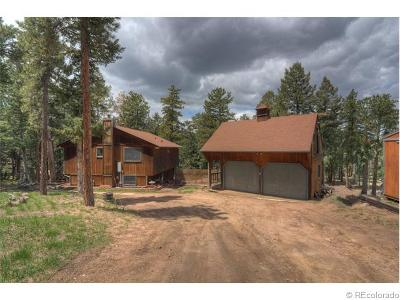 Conifer Single Family Home Sold: 26282 Rea Avenue