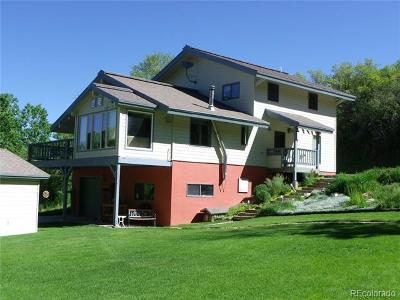 Steamboat Springs Single Family Home Active: 28925 Valley View Ln.