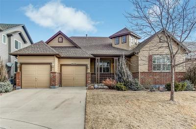 Castle Rock CO Single Family Home Active: $459,000