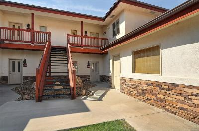Salida Condo/Townhouse Active: 113 M And M Lane #4B