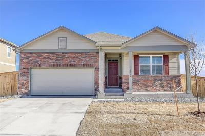 Thornton Single Family Home Active: 13648 Valentia Street