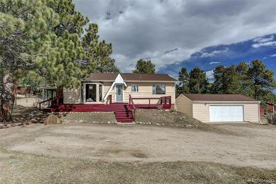 Conifer, Evergreen Single Family Home Active: 5195 South Hatch Drive