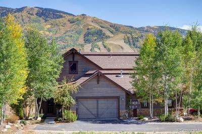 Steamboat Springs Condo/Townhouse Active: 996 Longview Circle #A