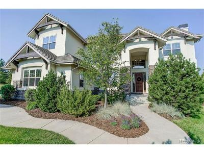Castle Rock Single Family Home Active: 6287 Ellingwood Point Way