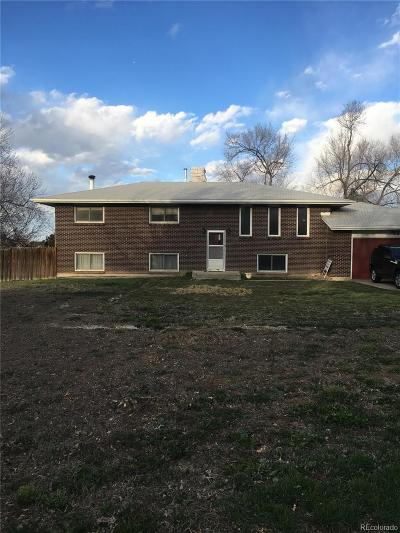 Longmont Single Family Home Active: 12832 Sheramdi Street