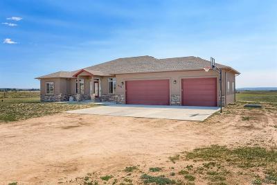 Peyton Single Family Home Active: 10935 McKissick Road
