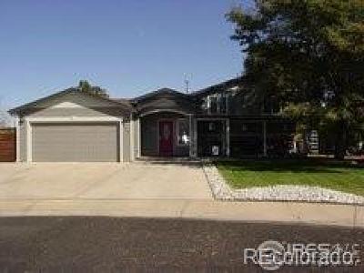 Platteville Single Family Home Active: 500 David Court