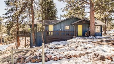 Evergreen Single Family Home Under Contract: 4934 South Pine Road