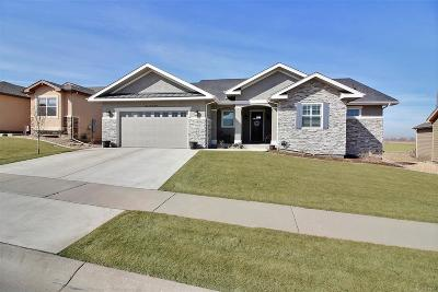 Greeley Single Family Home Active: 423 Double Tree Drive