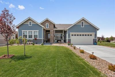 Broomfield Single Family Home Active: 10855 Graphite Street