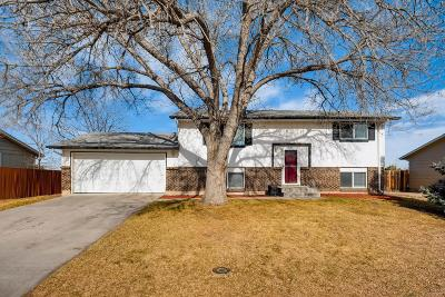 Littleton CO Single Family Home Active: $405,000