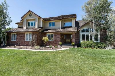 Centennial Single Family Home Active: 7157 South Andes Circle