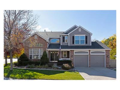 Highlands Ranch Single Family Home Active: 744 Huntington Drive