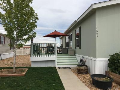 Firestone Single Family Home Under Contract: 4605 Ashwood Street #326