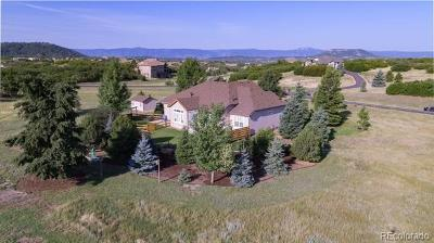 Castle Rock Single Family Home Active: 1604 Glade Gulch Road